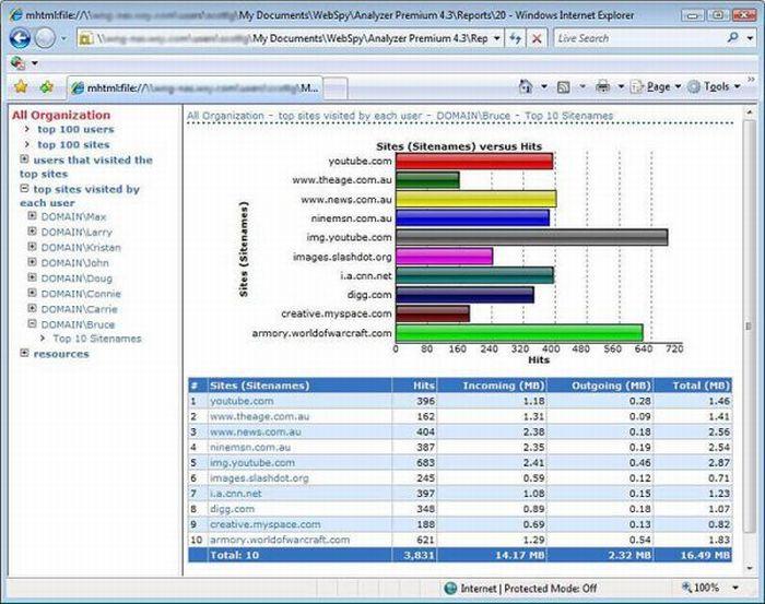 WebSpy Analyzer Standard 4.3.2.2 Full Screenshot. View.
