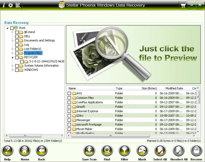 Program Stellar Phoenix Windows Data Recovery 1